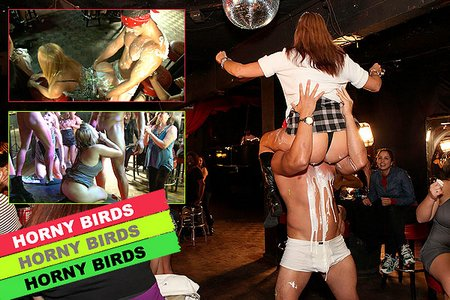 horny birds party porn